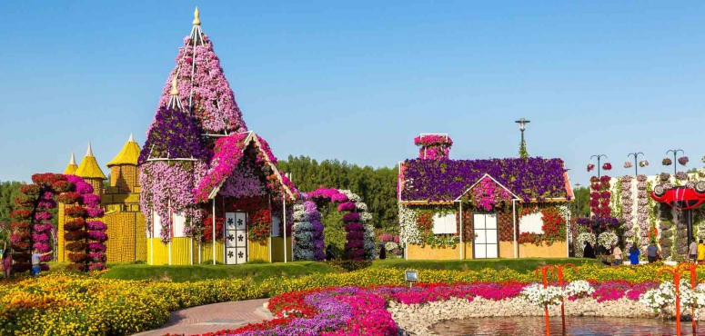 Dubai Flower Garden, UAE