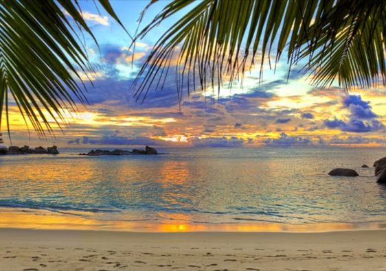 Amazing Things To Do In Goa