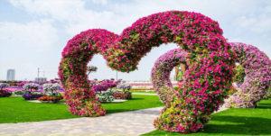 Rose Garden, Chandigarh