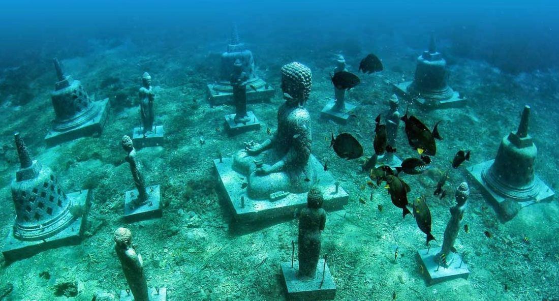 Swim through the underwater garden full of Buddha statues