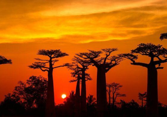 Amazing Places To Visit In Madagascar
