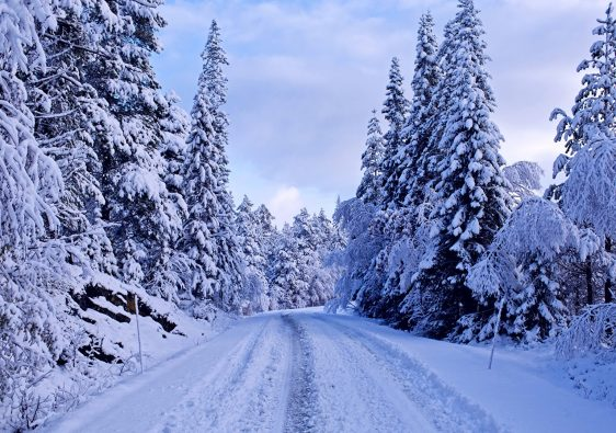 BeautifulPlaces In India Which Turn IntoSnowyWonderlands During Winter