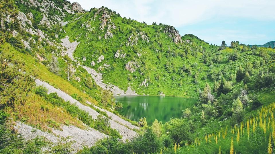 Sarkent National Nature Reserve