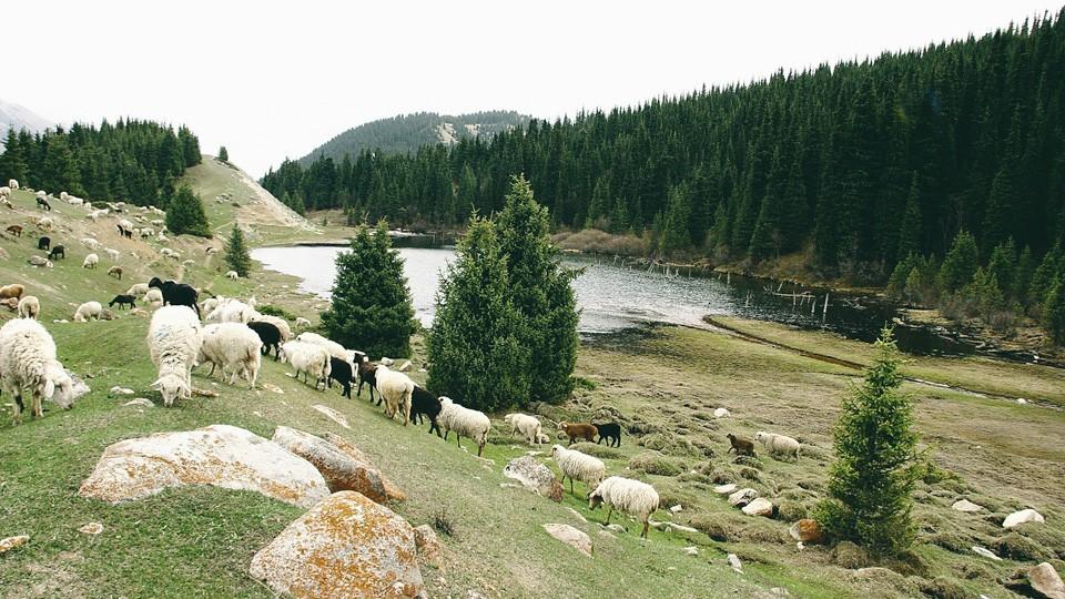 Ak-Suu Gorge