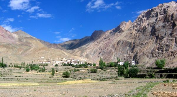 Mangyu, Ladakh