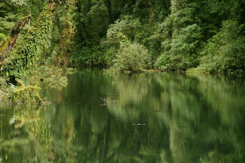 Dzudu Lake, Phek