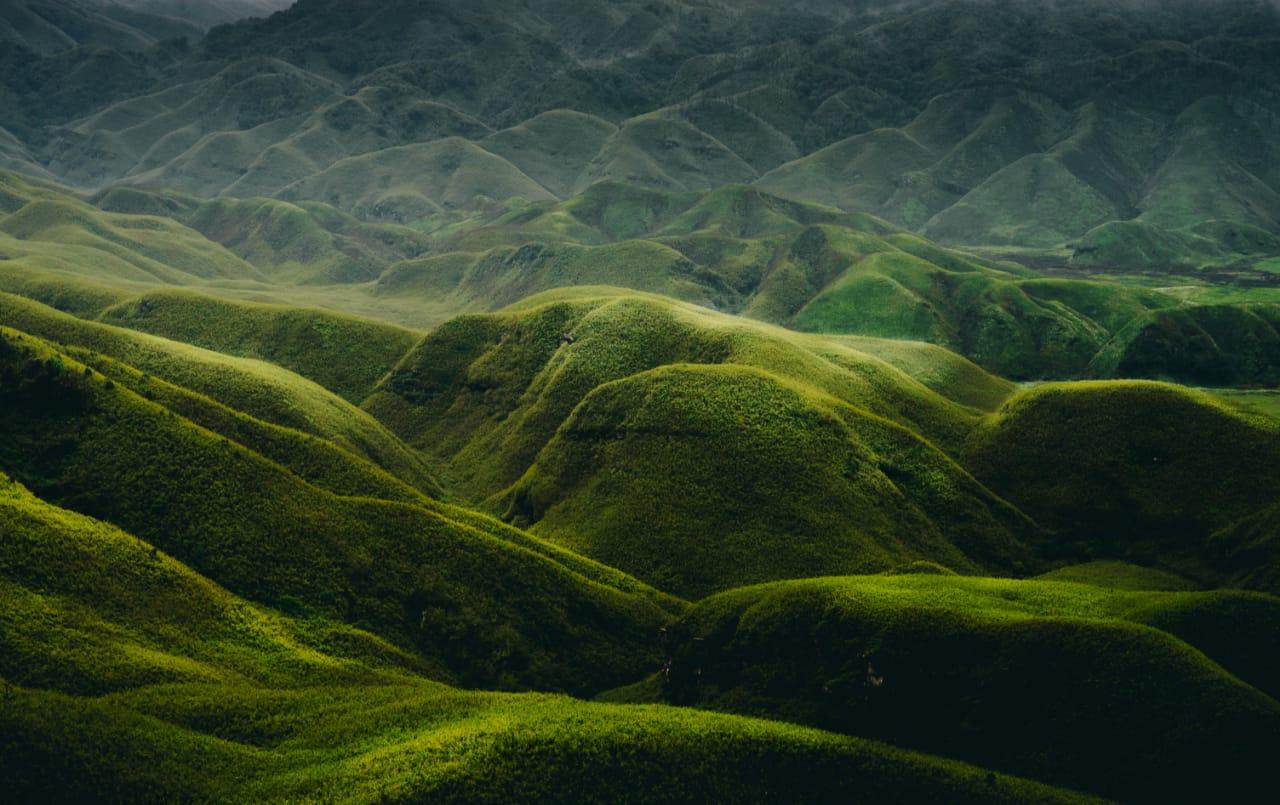 Dzukou ValleyKohima, Nagaland