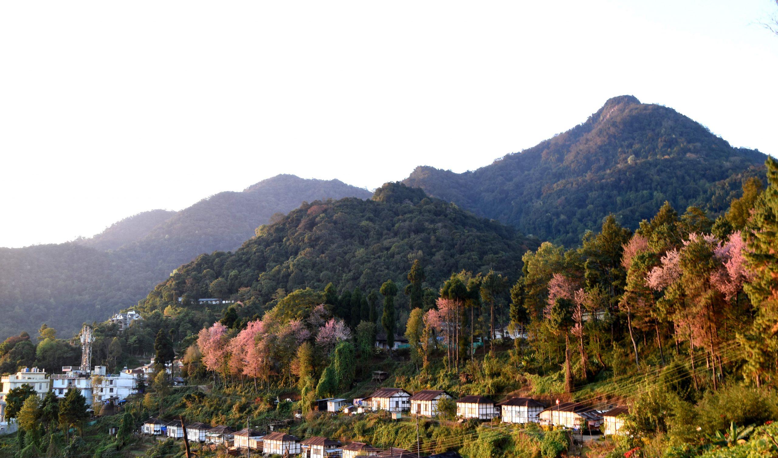 Jotsoma Village, Kohima
