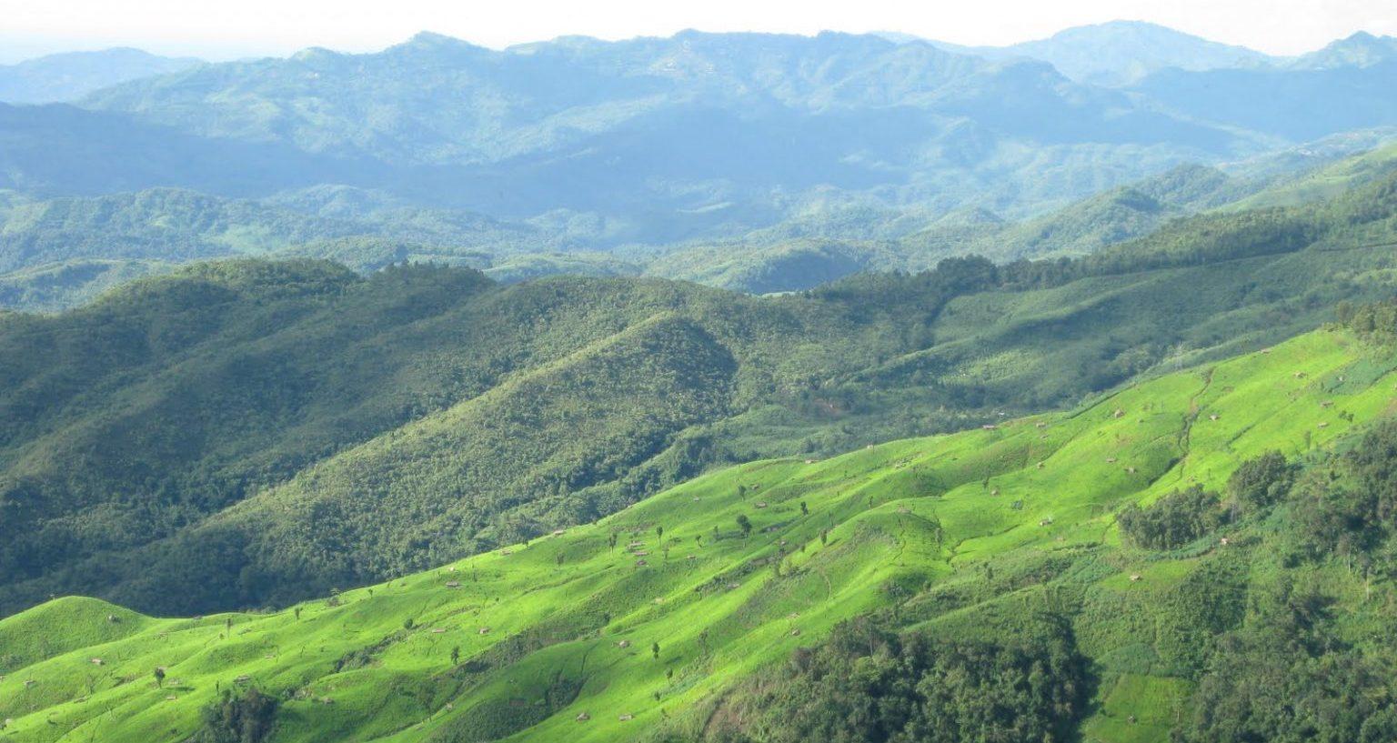 Rangapahar Reserve Forest, Dimapur