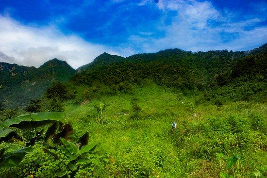 The Japfu Peak, Kohima