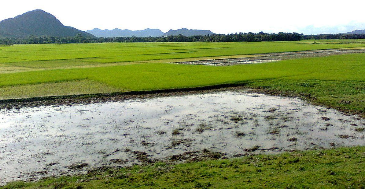 Goalpara, Assam