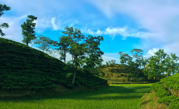 Hailakandi, Assam