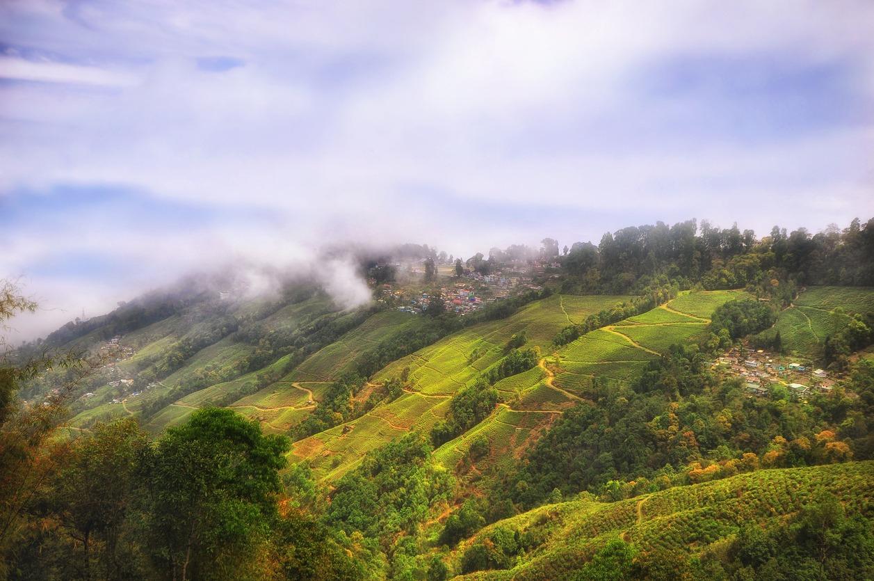 Lamahatta, Kalimpong