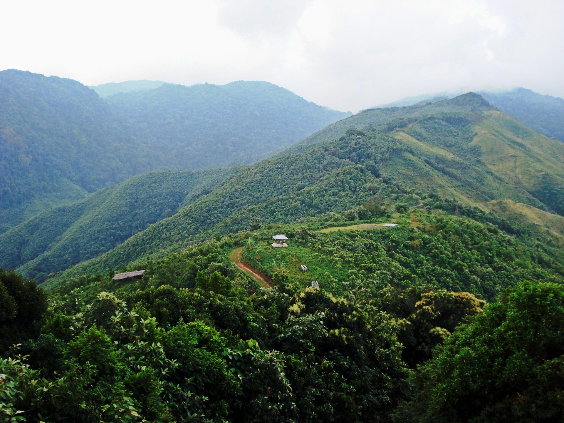Tura Peak, Meghalaya